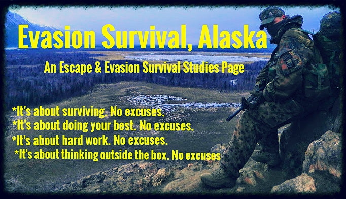 Survival and Evasion